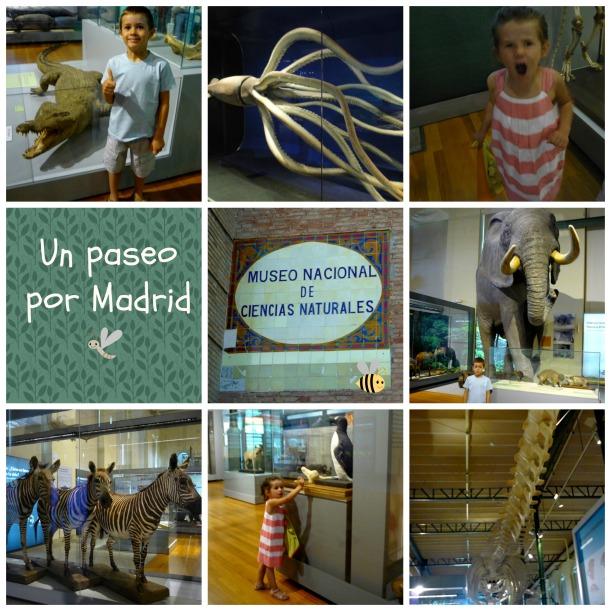 museocsnat1
