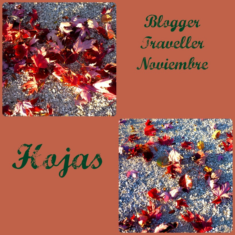 bloggertravellerhojas1