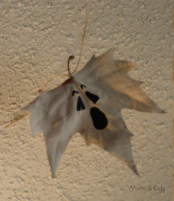 hojas6